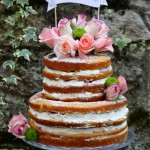 Naked cake ai frutti di bosco, panna montata al mascarpone